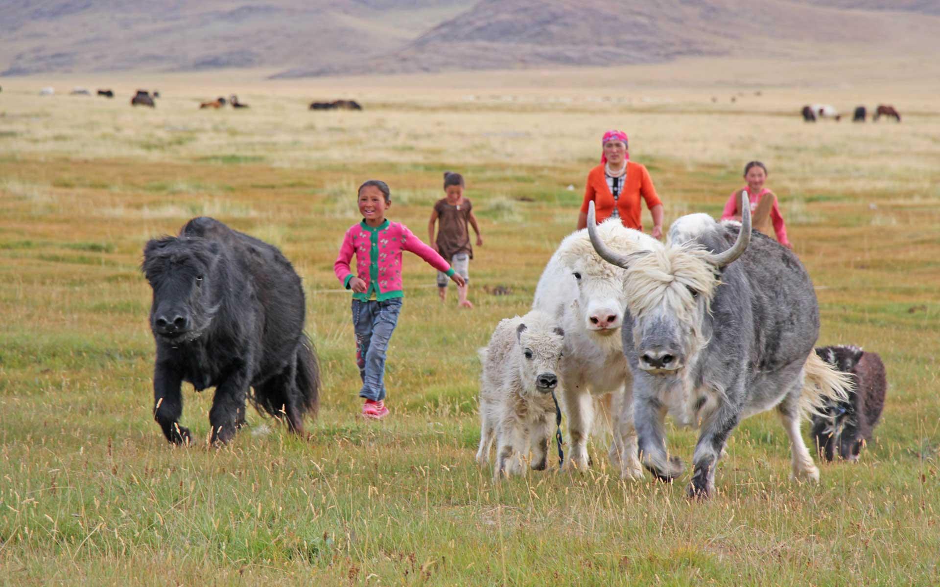 In der Mongolei.